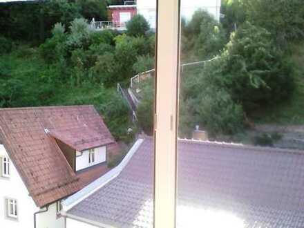 Helle 1-Zimmer-DG-Wohnung in Heidelberg- Ziegelhausen