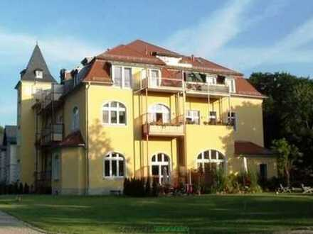 Penthouse in Radebeul-Lindenau mit Parkidylle