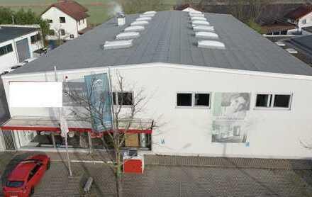 Arheilgen: Unternehmervilla für höchste Ansprüche + Halle und Verkaufsfläche