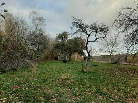 Weitläufiges Grünstück mit Obstbäumen in ZW-Niederauerbach