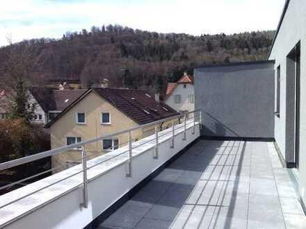Sonnige 3,5 Zimmer Penthouse-Wohnung mit großer Dachterrasse