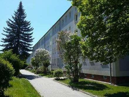 Neu sanierte 3-Raum-Wohnung mit Balkon auf dem schönen Sandberg/Wilkau-Haßlau