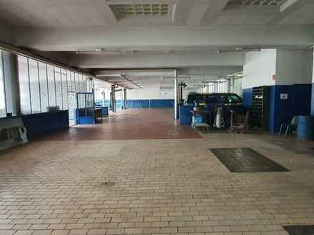 Werkstattfläche 200m², separate Fläche mit Rolltor, 3 Hebebühnen und Toilettenmitbenutzung