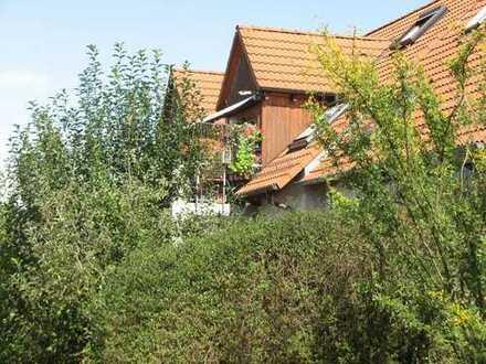 2 (3)-Zi-DG Wohnung in ruhiger, gepflegter Lage, sofort frei