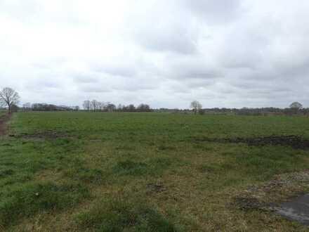 rd. 3 ha Grünland in WST/Tarbarg zu verkaufen