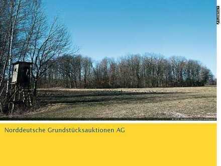 Waldflächen in 17498 Diedrichshagen OT Guest
