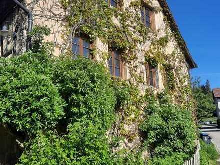 Vollständig renovierte 3-Zimmer-Maisonette-Wohnung mit Balkon in Heiligenberg