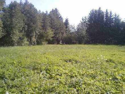 Kirchheim im Unterallgäu - jetzt auf tollem Grundstück bauen - da, wo andere Urlaub machen!