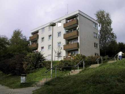 Schöne 3 ZKB Wohnung Am Hofacker 8, 67806 Rockenhausen 94.09