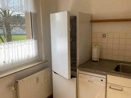 Stilvoll modernisierte 2-Zimmer-Wohnung mit Balkon, EBK und barrierefreier Dusche in Zwickau-Mosel