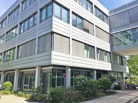 Moderne Erdgeschoss-Fläche