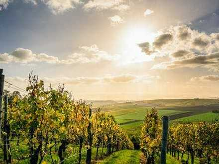 Ihr neues Anwesen strahlt! Naturnah zwischen den Weinbergen + inklusive TOP-Baugrundstück!
