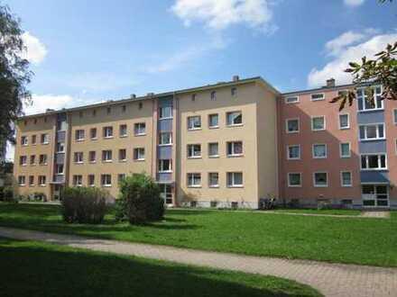 Traumhaft renovierte 3 Zimmerwohnung mit Balkon sucht Sie!