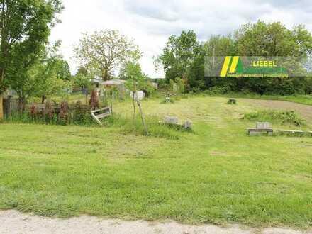 Jockgrim: Garten 310 m² im Kleingartengebiet