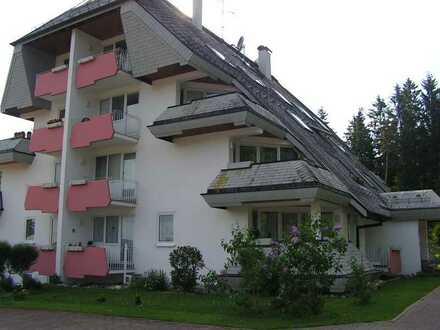 1 Zi-Wohnung Wohnung in wunderschöner Landschaft