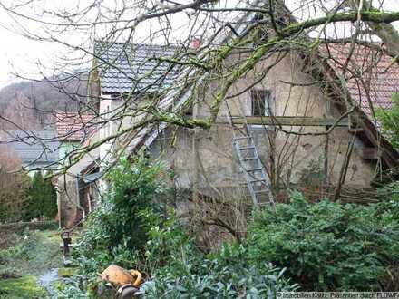 Einfamilienhaus mit Scheune, Schuppen und Stallungen in der Umbau- und Renovierungsphase