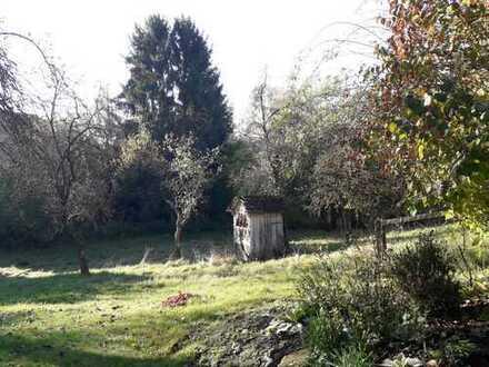 4 Zimmerwohnung mit großem Garten