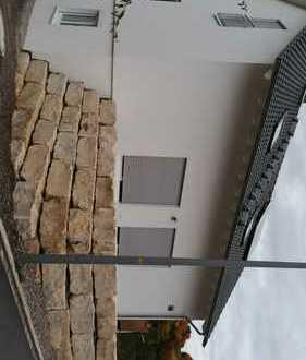 Neubauhaus 2014 - Inzlingen