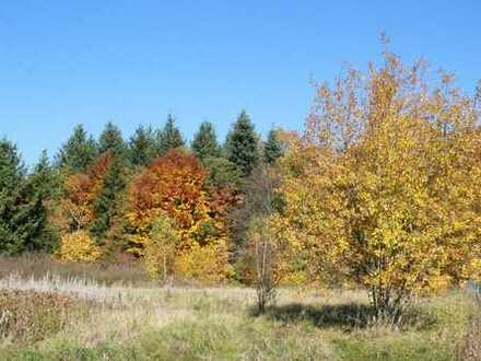 Großes Grundstück (ca. 2810 m²) im Grünen nahe Heidenheim und Aalen zu verkaufen - provisionsfrei