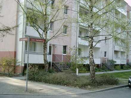 1 Raum Whg Potsdam Waldstadt II / Waldrandlage