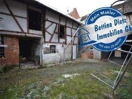 DIETZ: Liebhaberobjekt !! Sanierungsbedürftige Hofreite in Babenhausen OT Harreshausen