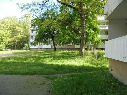 Schöne, renovierte 2-Zimmerwohnung mit Blick ins Grüne in Duisburg, WBS erforderlich,