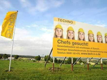 Gewerbegrundstück im Technologie & Gewerbepark Neckartal-Odenwald