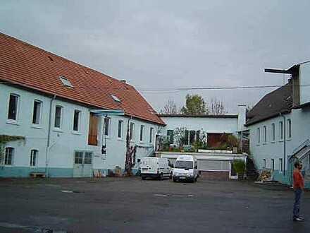 Bauträgergrundstück direkt am Schlosspark im Stadtzentrum, Schlosspark