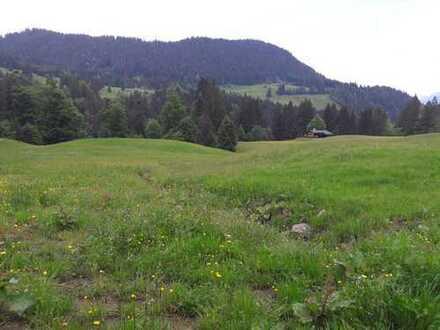 --RESERVIERT-- WIESENGRUNDSTÜCK, Vieh-/Pferde und Weideland, in Riezlern /Kleinwalsertal