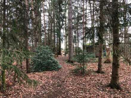 Rarität! Traumgrundstück in Liegau-Augustusbad