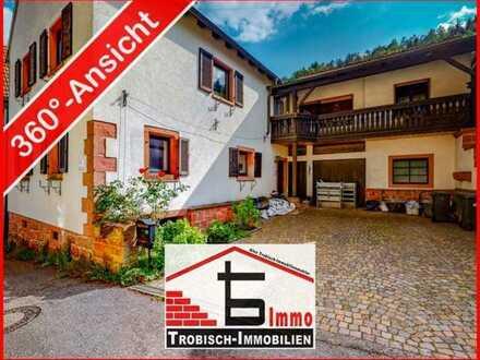 Charmantes Haus mit Scheune und Einliegerwohnung - Trobisch-Immobilien
