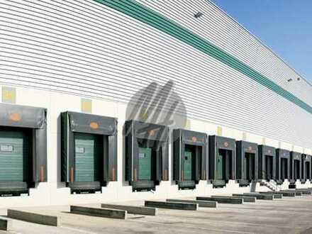 RAMPE + EBEN ✓ NÄHE BAB ✓ Moderne Lager-/Logistikflächen (20.000 m²) zu vermieten