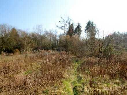 Grundstück mit altem Baumbestand und genehmigter Bauvoranfrage für ein freist. EFH