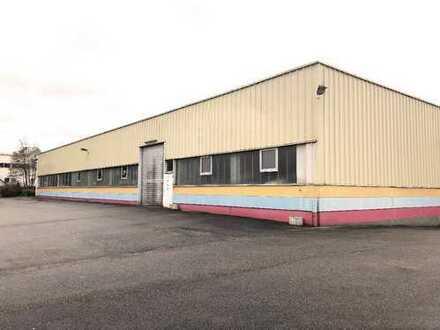 Angelbachtal: Große, stützenfreie Produktionshalle mit Büros zu vermieten! (# 4897)