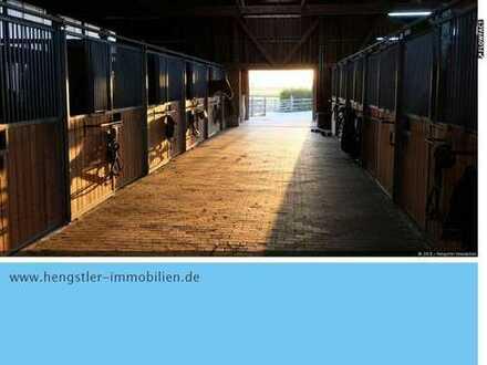 Exklusive Reitanlage bei Aschaffenburg - Plug and Play