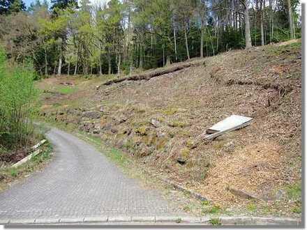 Traumhafter Bauplatz in schönster Aussichtslage in Alpirsbach