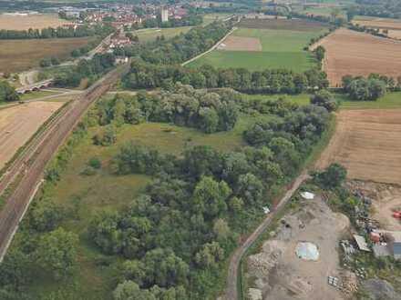 3 ha Grundstück - Biotop