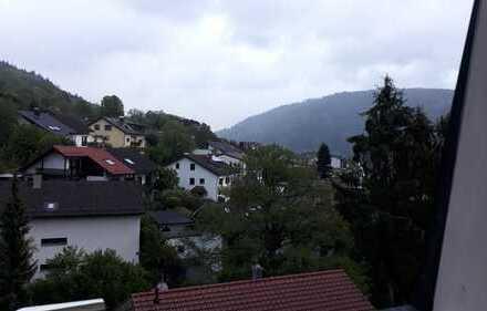 Schöne, geräumige ein Zimmer Wohnung in Heidelberg, Ziegelhausen