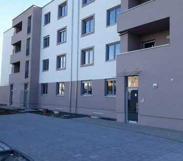 Schönefeld - 2 Raum Wohnung im Neubau