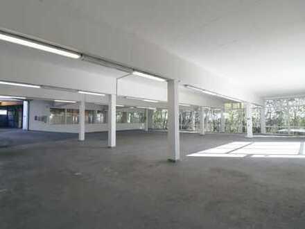 Provisionsfrei! Tageslichthelle befahrbare Verkaufshallen + Büros + Parkflächen in bester Lage