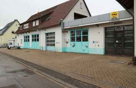 Schöne Werkstatt mit einer Ausstellungshalle, Werkstatt mit 5 Arbeitsplätzen in 71131 Jettingen