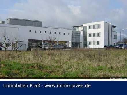 Top-Gelegenheit!Repräsentatives Geschäftshaus mit Penthouse u. Dachterrasse in Mainz-Drais