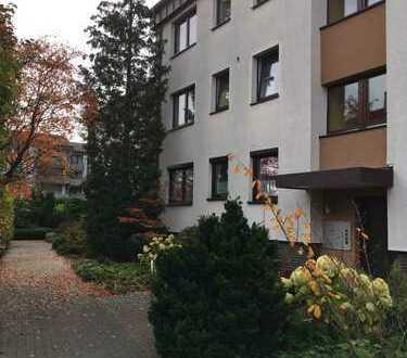 Helle und komplett renovierte Wohnung in ruhiger Lage