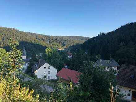 Schöne 2,5-Zi.-Wohnung mit Balkon u. Einbauküche mit tollem Panoramablick