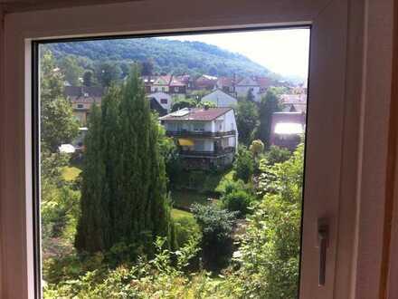 Schöne drei Zimmer Wohnung in Heidelberg, Ziegelhausen