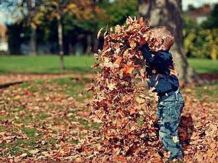 Die schönen Seiten des Herbstes im eigenen Zuhause genießen
