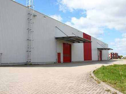 Logistik- & Büroflächen in Top-Lage zu vermieten