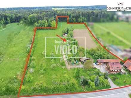 Vielseitig nutzbares Anwesen mit Schwarzwaldhaus, Brennerei, Nebengebäude, Bauplatz, Felder und Wald