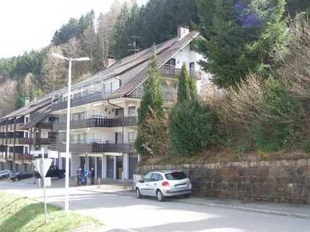 Mietkauf!!Große modernisierte Wohnung mit großer Balkon u. Weitblick! Gutes Finanzierungsangebot!