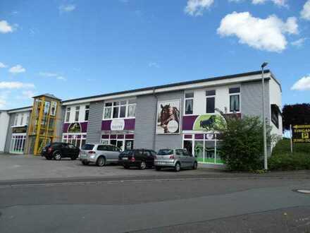 Moderne Gewerbefläche (Büro-Praxis-Laden-Ausstellung) direkt an der B54 in Elbtal-Dorchheim